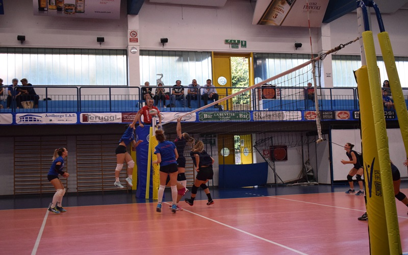 palzolavolley