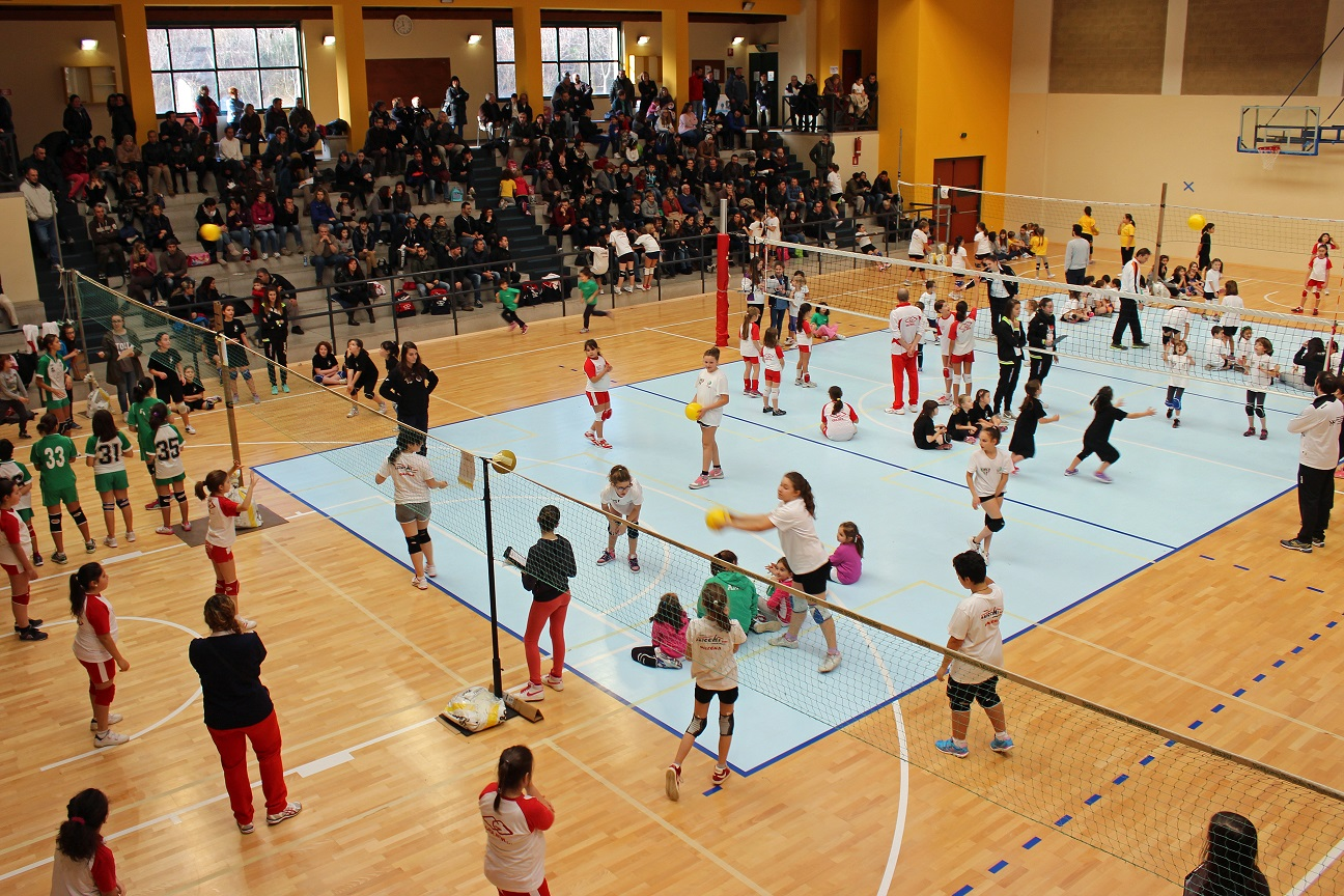 minivolley orna csi